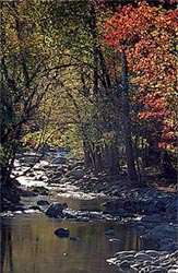 Motels in Gatlinburg Tennessee.  Downtown Gatlinburg & Ski Mountain Road Affordable Vacation Lodging in the Smoky Mountains Tennessee at two Riverhouse Motels locations - Riverhouse Motor Lodge and Riverhouse at the Park.  Choose a downtown Gatlinburg motel within walking distance of Gatlinburg attractions, restaurants and shopping, or select a Ski Mountain location at the entrance to the Great Smoky Mountains National Park.  Affordable Gatlinburg Tennessee Motels.